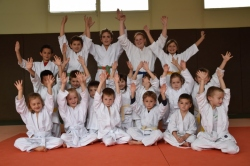 Section Judo